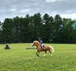pony pal field